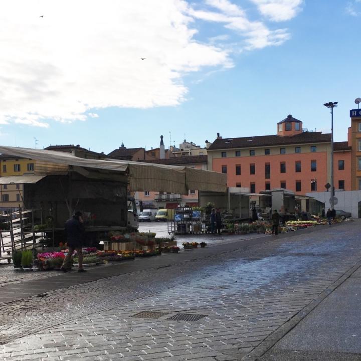 bologna flower markets piazza viii agosto italy