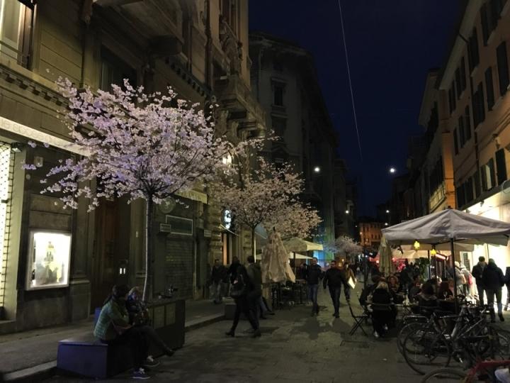 spring in bologna via degli orefici