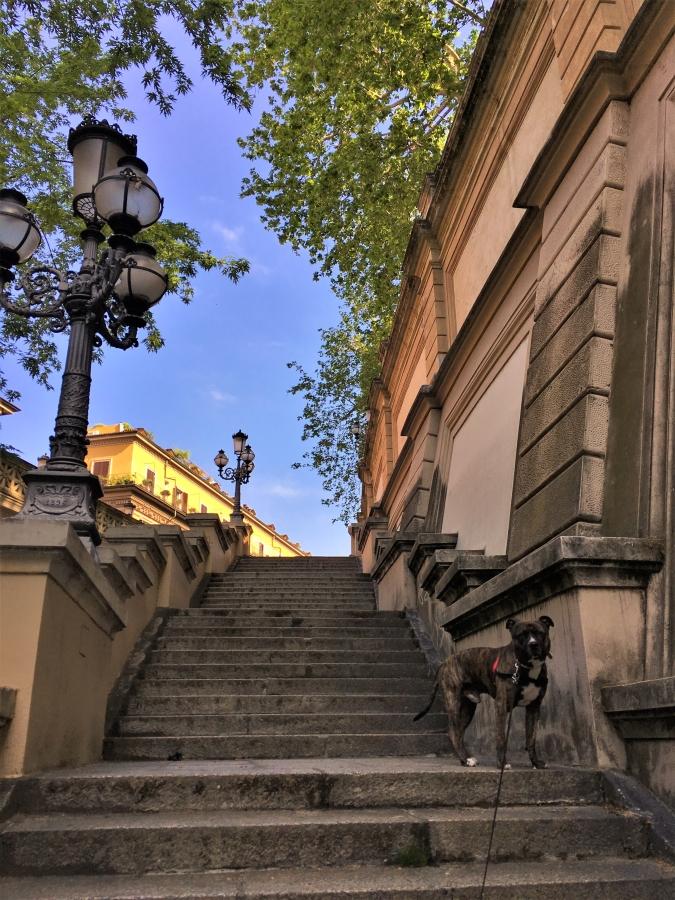 parco della montagnola pincio bologna stairs
