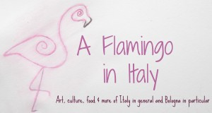 a flamingo in italy expat travel blog bologna