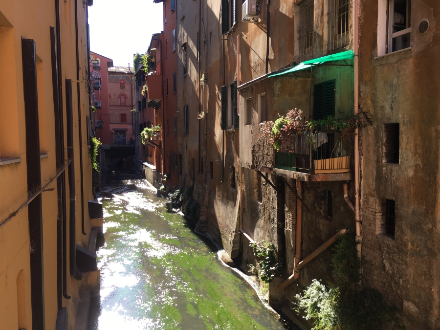 Bologna canal things to see in Bologna weekly photo challenge
