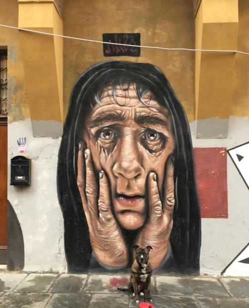 Bologna #DolceVitaBloggers portici street art architecture favorite italian city